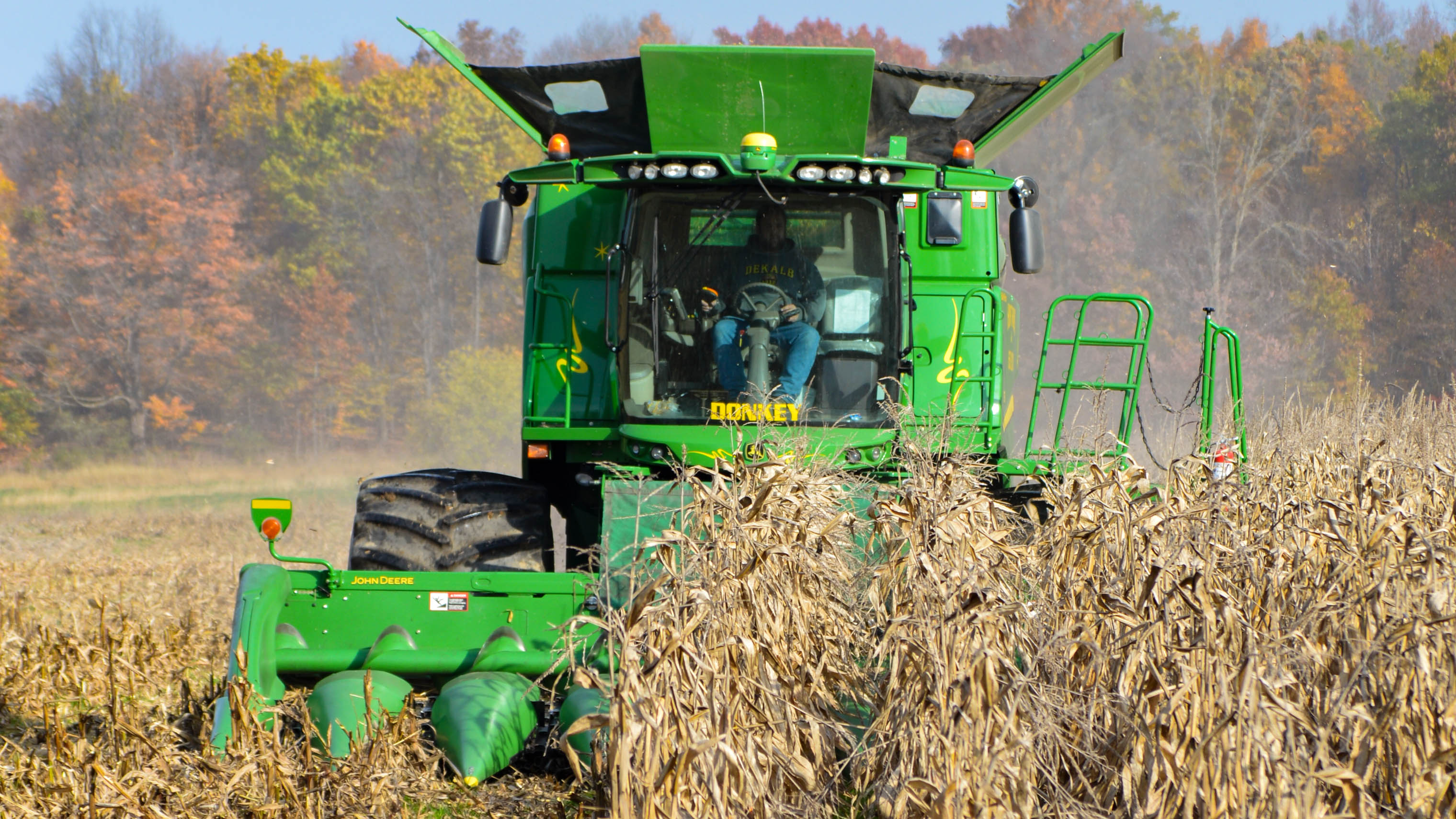 Combine harvesting corn at Hunt Farms, Genesee County, Michigan